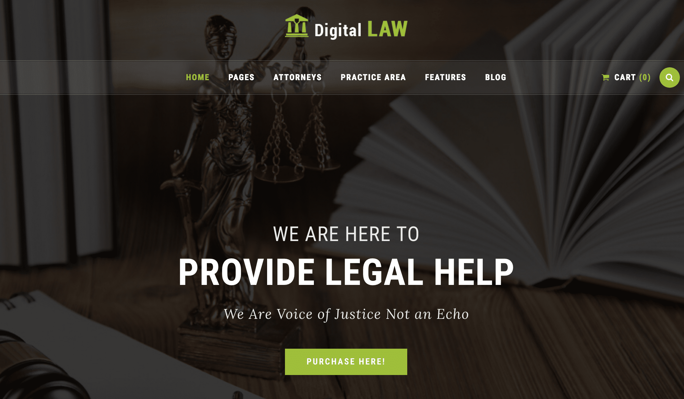 40+ Best WordPress Themes for Accountants and Law Firms