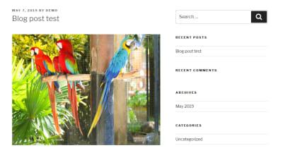 wordpress blog post demo image optimization display