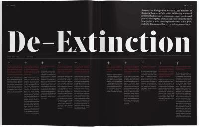Avaunt Magazine — Smashing Magazine
