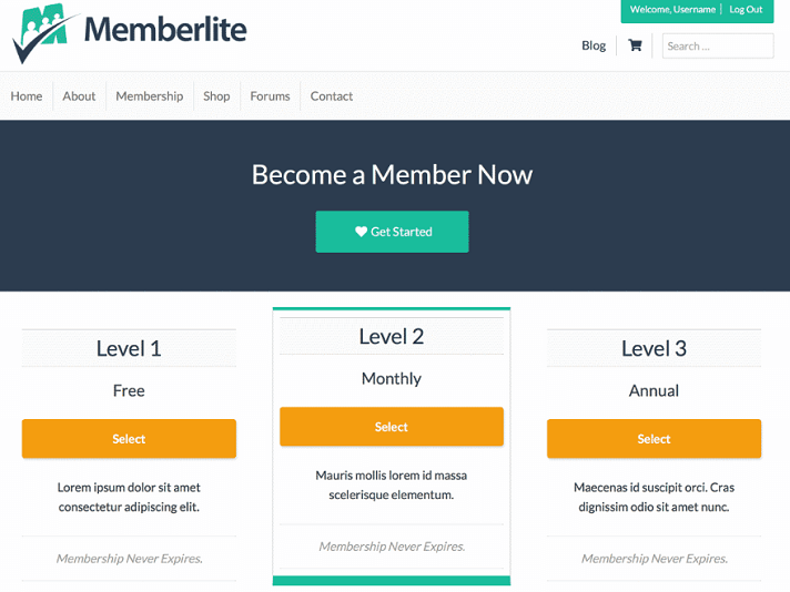 An Easy to Use, Fully Loaded Membership Plugin