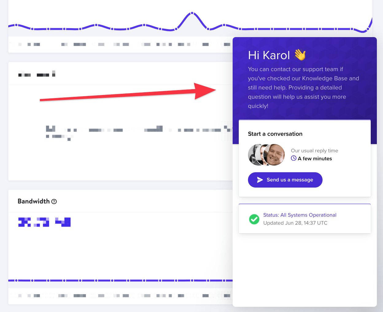 Kinsta hosting review: support chat