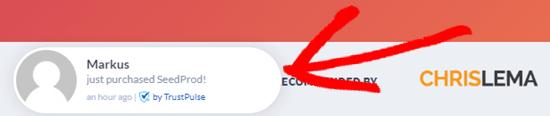 A TrustPulse notification showing on the SeedProd website