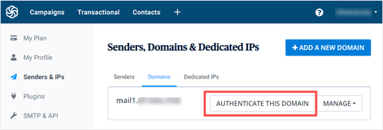 The Authenticate Domain button which lets you go back to the DNS settions