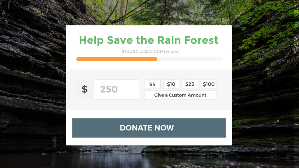 How to Accept Donations on Your WordPress Site