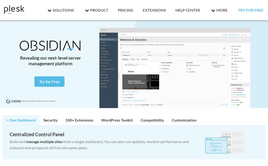The Plesk web hosting control panel.