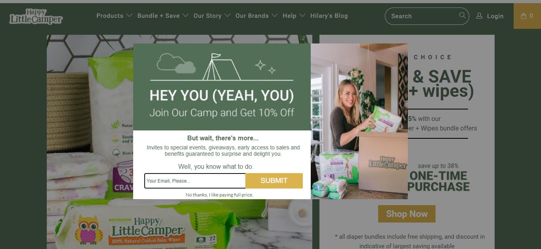Web Development for Happy Little Camper Baby