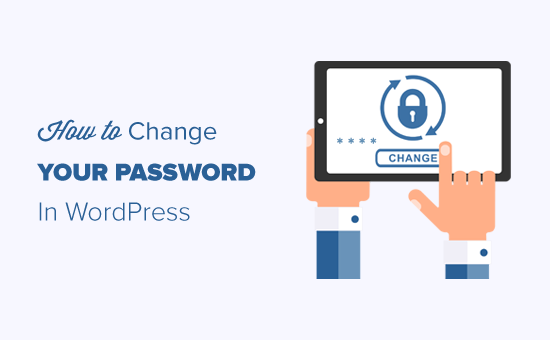 How to Change Your Password in WordPress (Beginner's Guide)