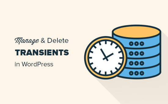 How to Manage and Delete Transients in WordPress